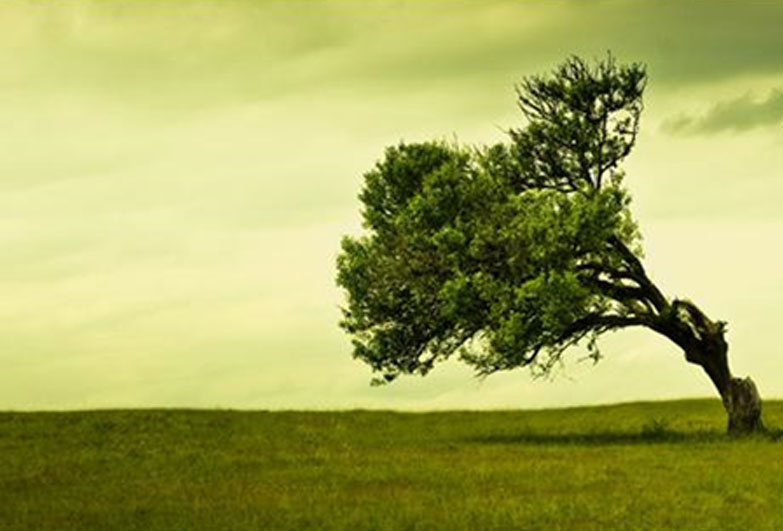 Are You Well Grounded - Article by Naveen Lakkur